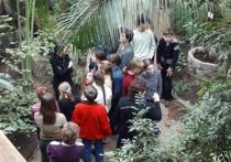 Революция в Ботаническом саду: сенсорные растения и круглосуточный режим