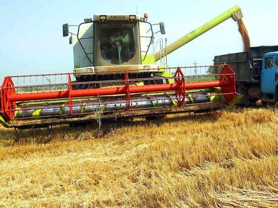 В Оренбуржье хлеборобы отдают зерно за копейки