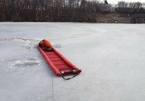 Московские спасатели выловили из реки целое семейство