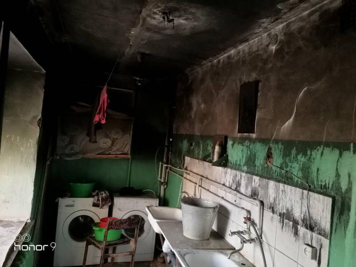 Полицейская собачка спасла жильцов общежития вОрске